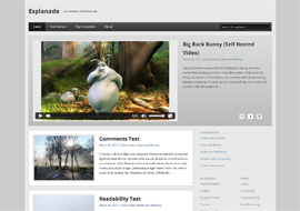 Esplanade – Free HTML5 Responsive WordPress Theme