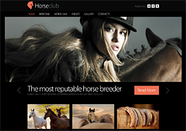 Horse Club – Free HTML5 Template