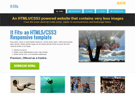 Free HTML5/CSS3 Responsive Template