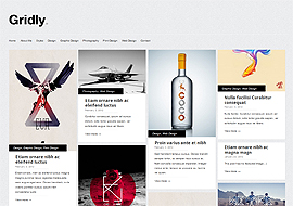 Premium WordPress Responsive Themes Free