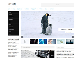 Responsive Magazine WordPress Theme Free