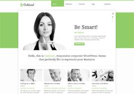 Premium Responsive WordPress Theme free download
