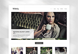 Widely – Free HTML5 WordPress Theme