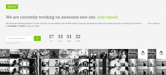 Flybird – Premium Coming Soon Page