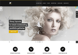Forte Multipurpose WP Responsive theme (eCommerce ready)