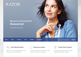 Razor – Responsive WordPress Theme