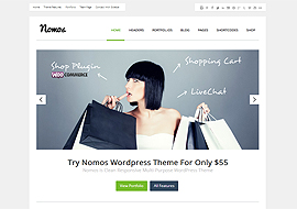 Nomos Clean Multi-Purpose Business Theme
