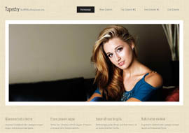 Tapestry – Free HTML5 Responsive Template