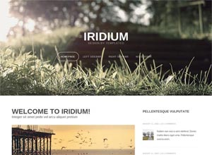 Iridium- Free Responsive HTML5 Template